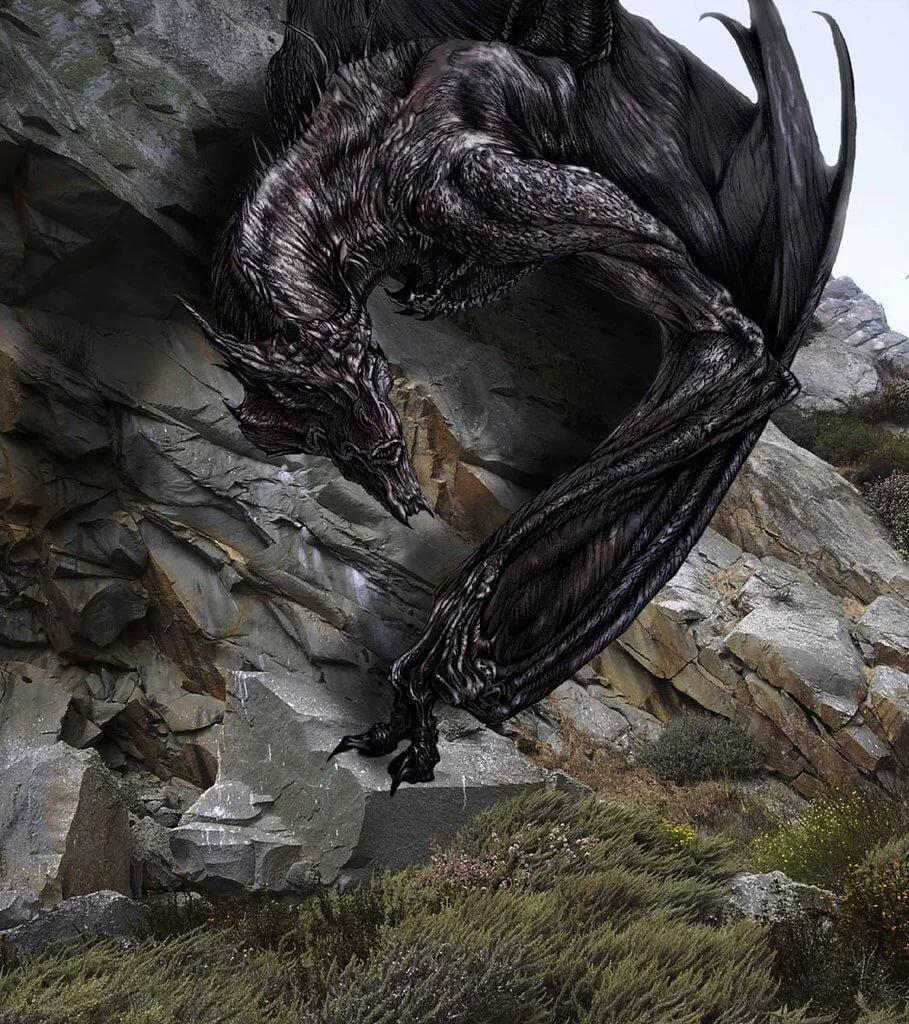 связанные данным фото мир драконов удобно, есть минус