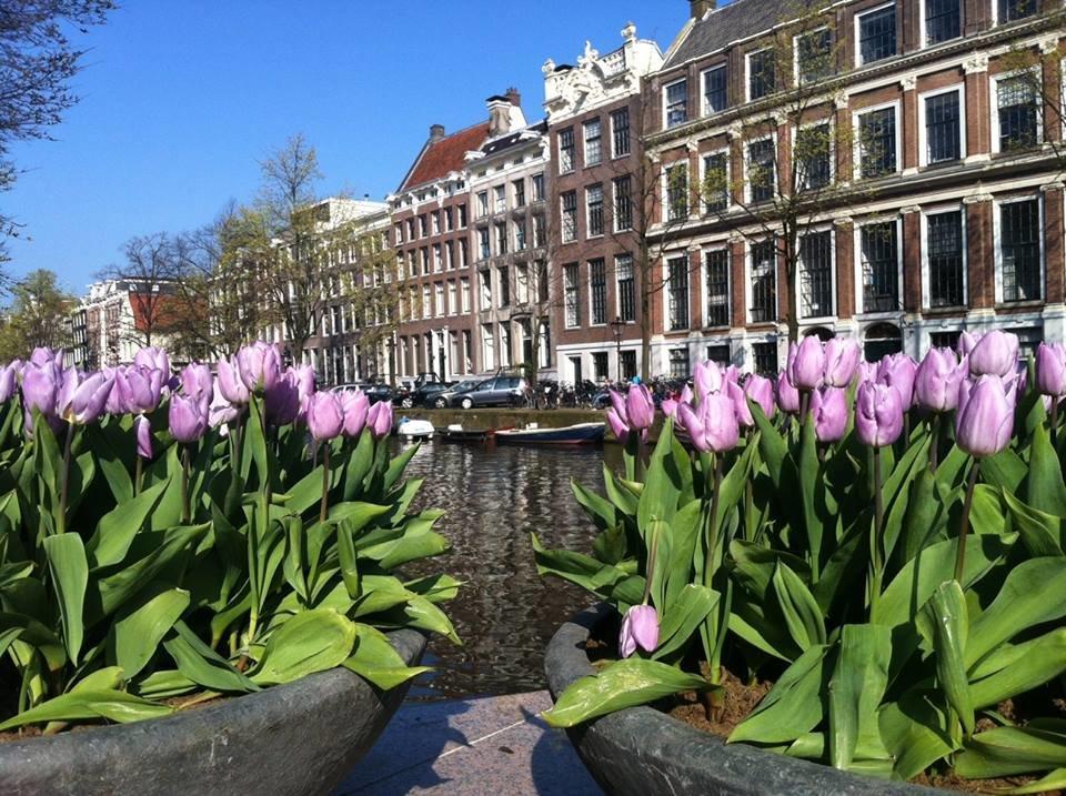 нидерланды апрель фото потребовала