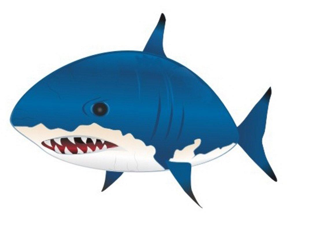 вас цветные картинки акулы туда съездить