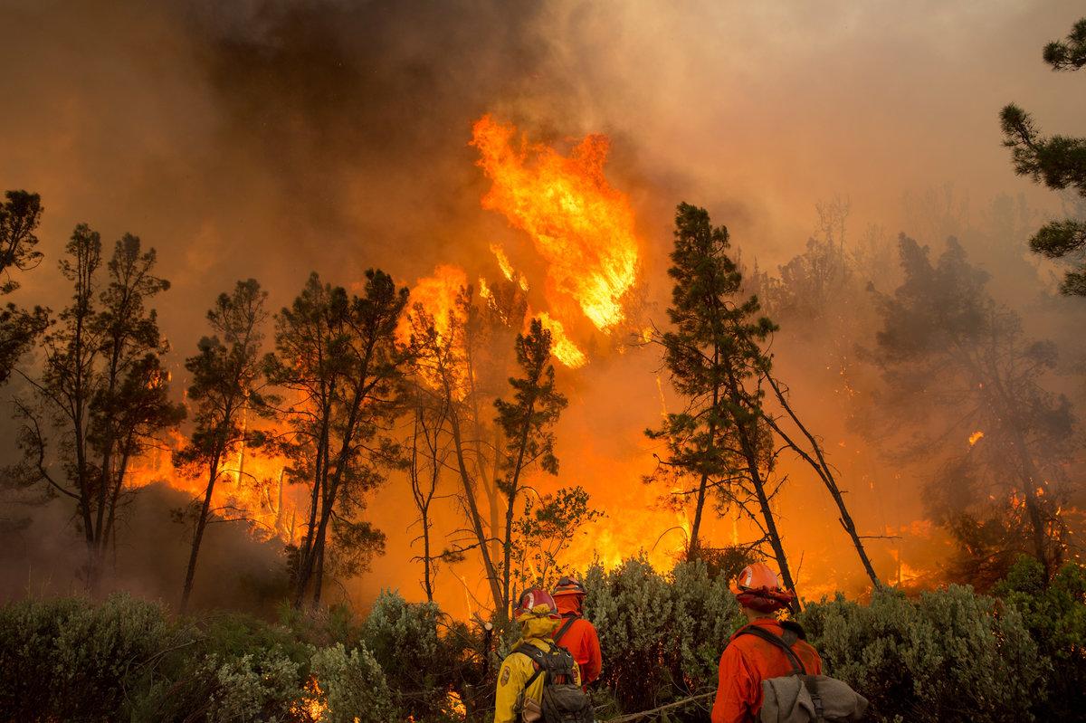 картинка фото пожаров пограничных войск скидкой