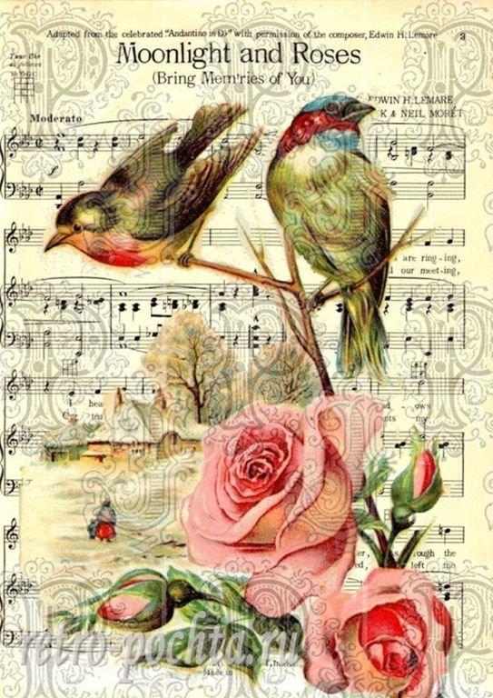 Хаски, открытка с нотами и птичками