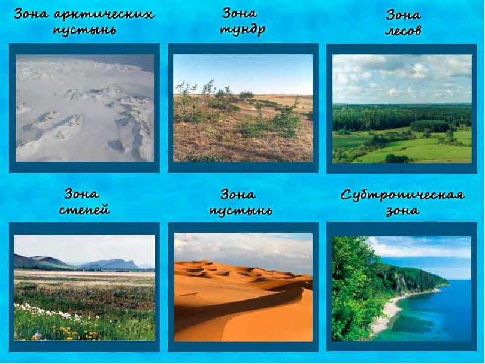 Природные зоны фото и названия