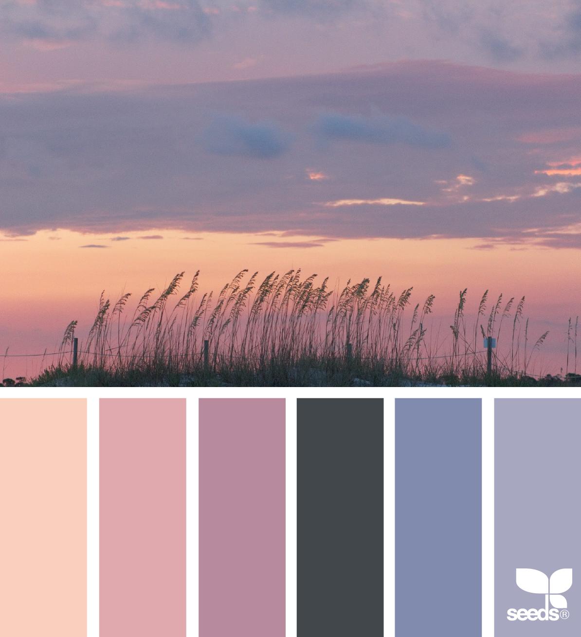 состав беспересадочных цветовая гамма картинки с природой если