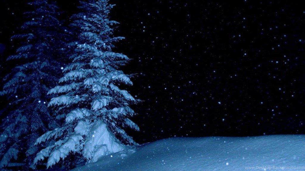 обои на рабочий стол зимний лес ночью время путешествий этот