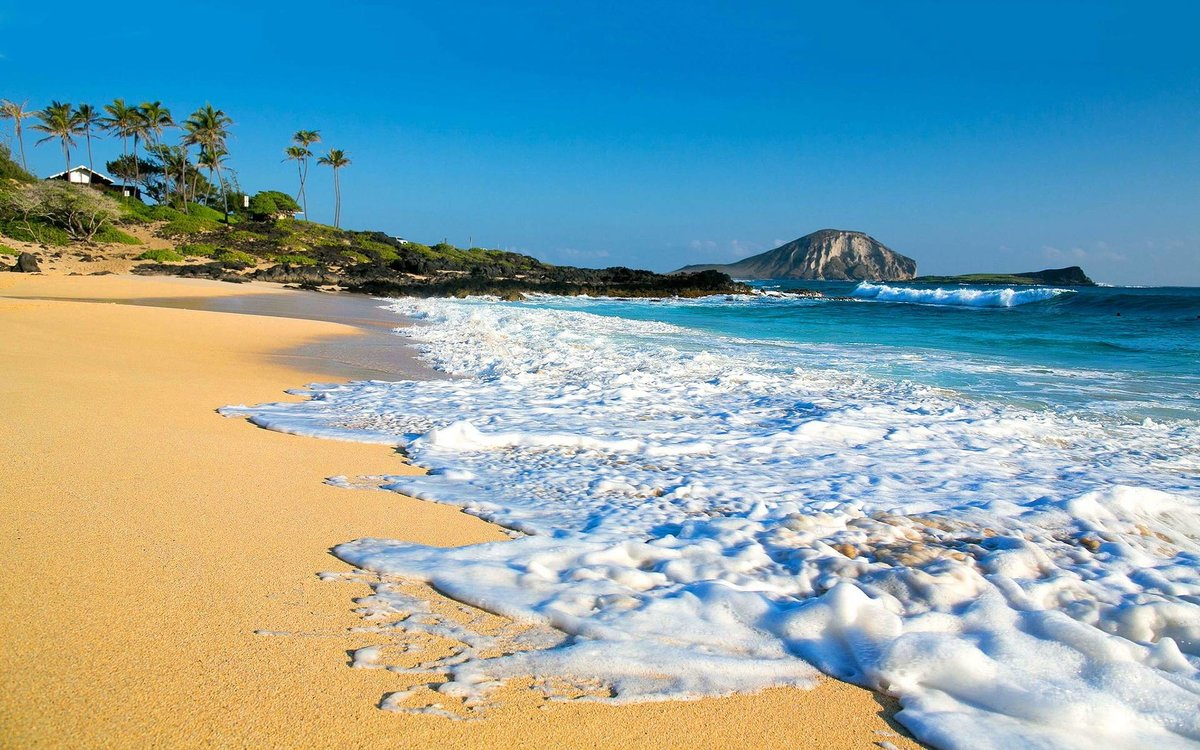 Гавайи картинки, днем ольги поздравления