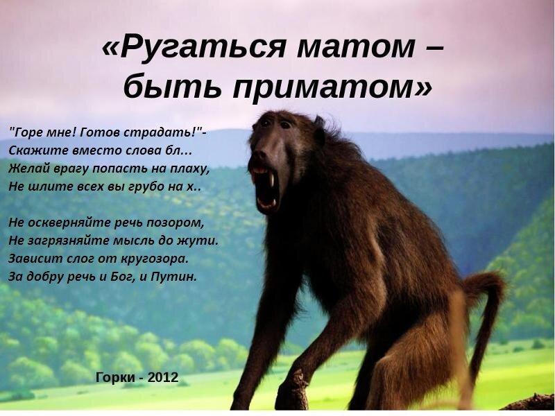 Русские орут матом, клизма в попу