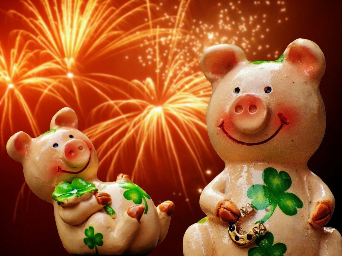 Открытки со свинкой к новому году фото