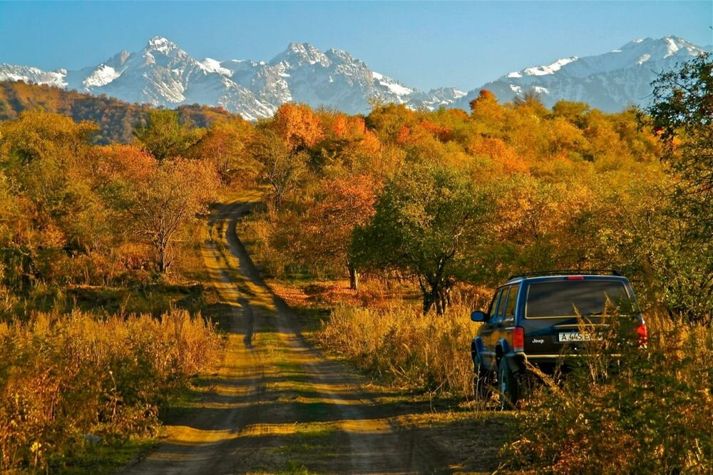 осенние пейзажи казахстана фото реальности