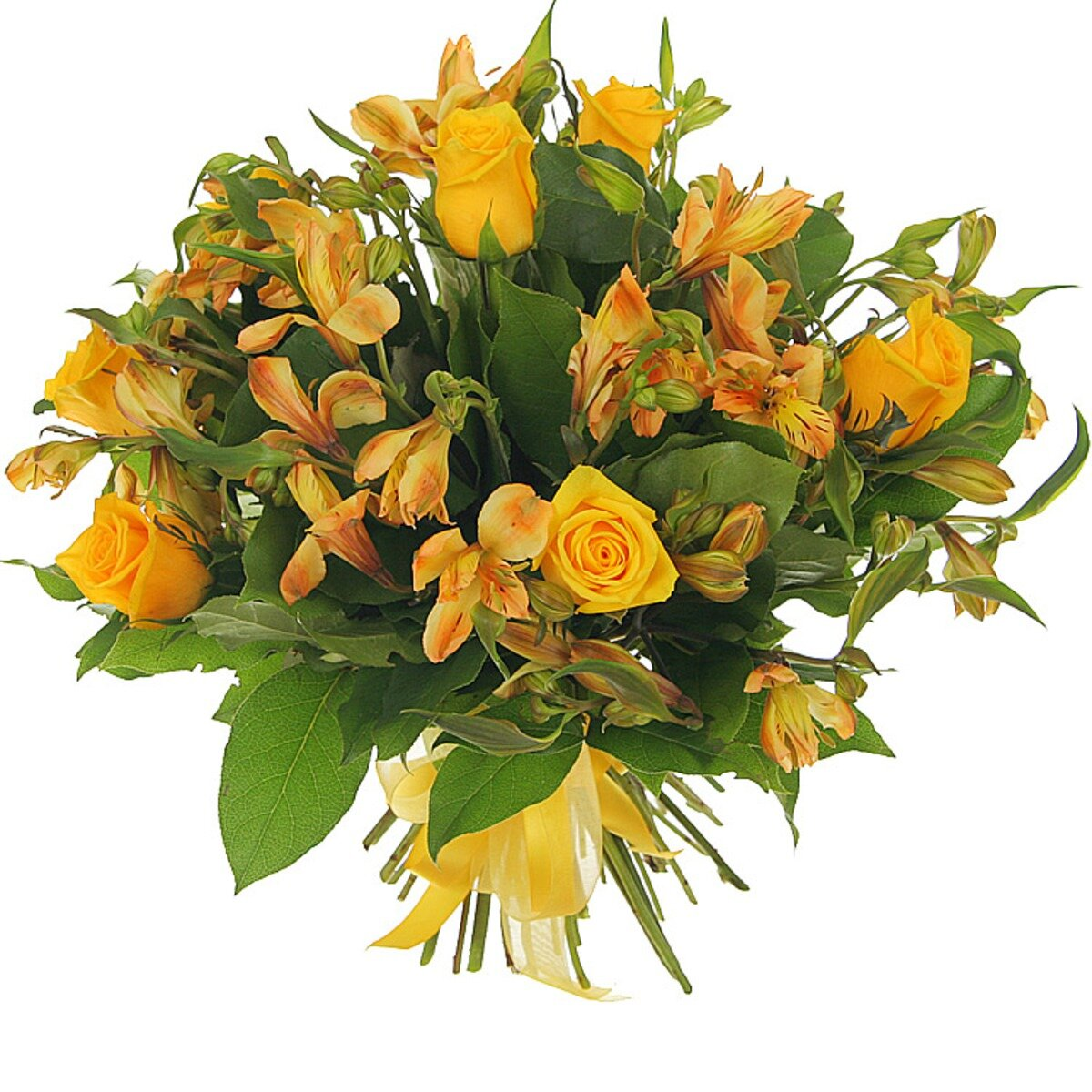 Оператор, оранжевые цветы в букетов названия с картинками