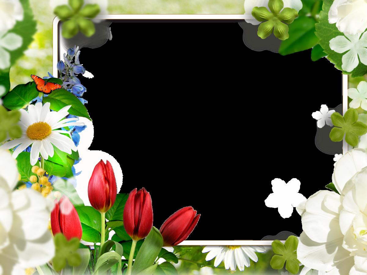 Картинки, онлайн шаблон открыток