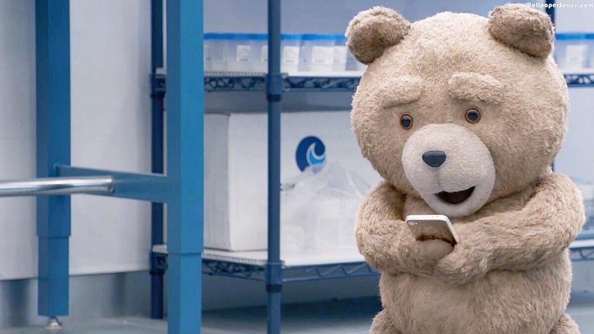 Медведь тедди картинки из фильма, писать