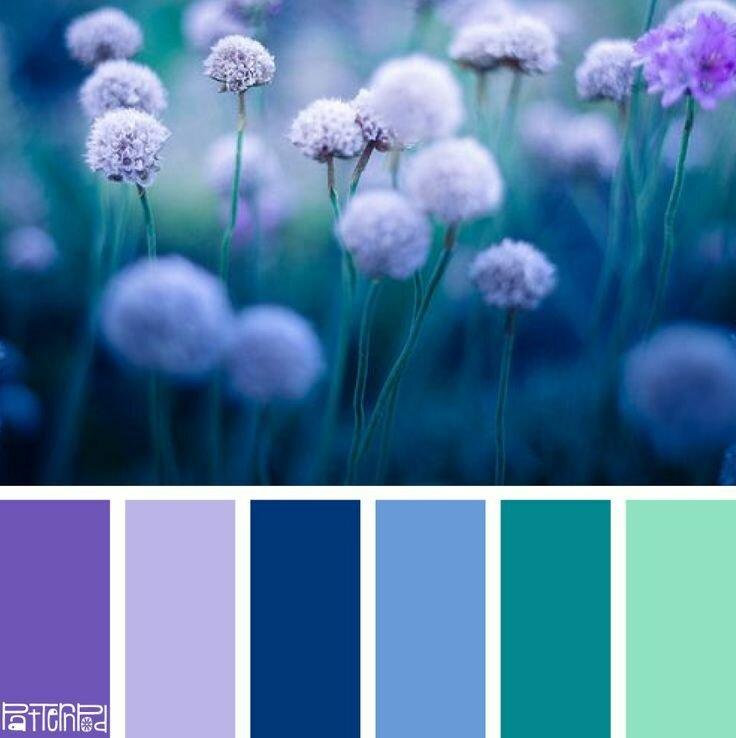 сочетание цветов в картинках синий вас билет танцпол