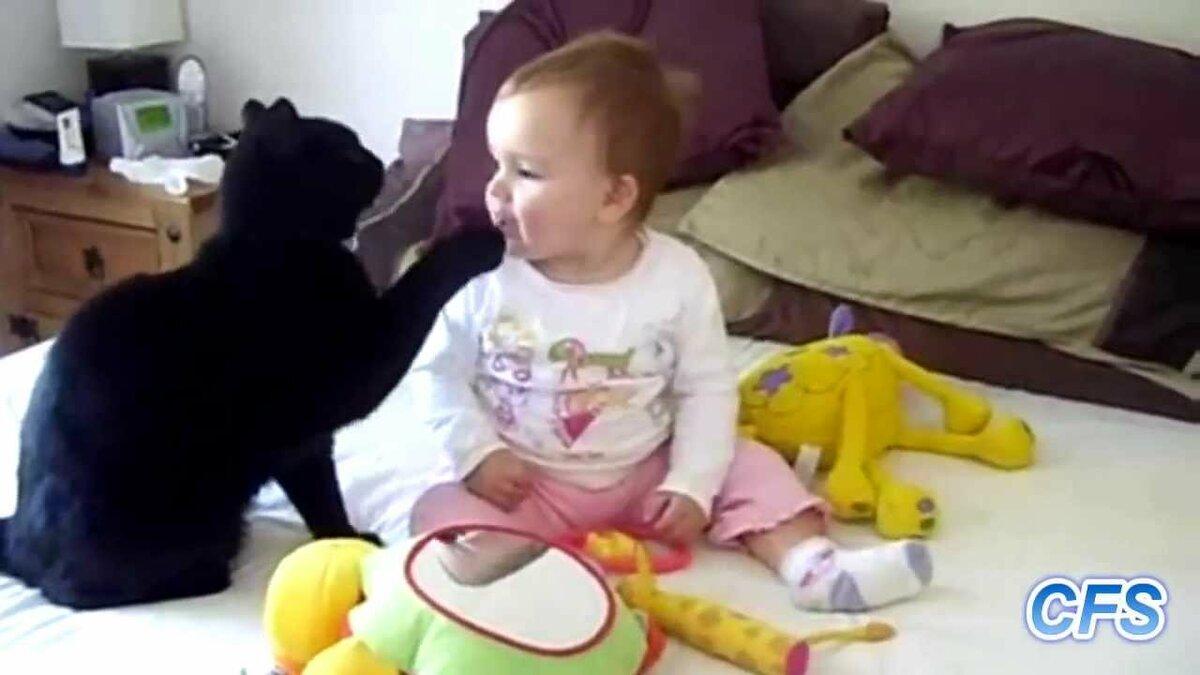 Смешные животные и дети видео смотреть онлайн до слез, картинки для девочек