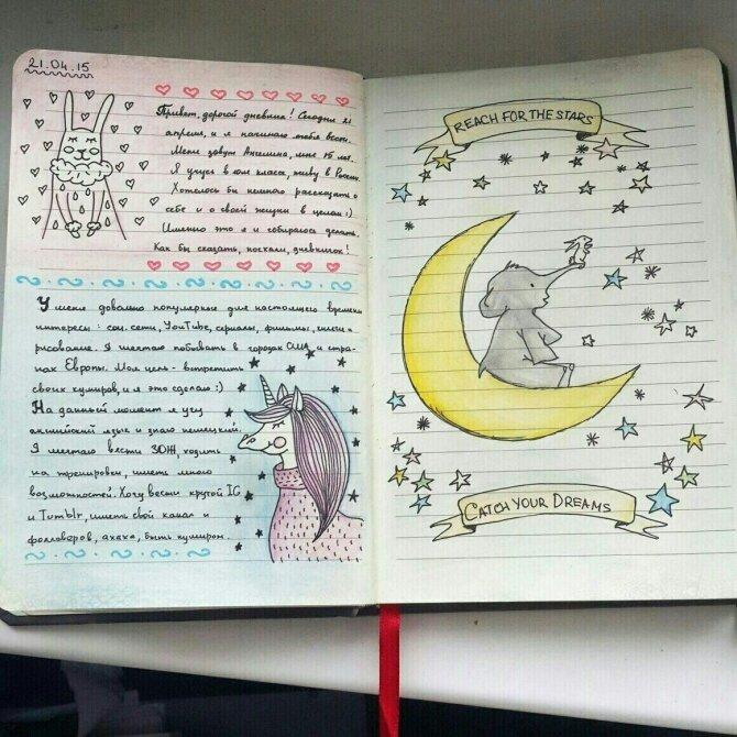 виды дневников картинки качествами должна обладать