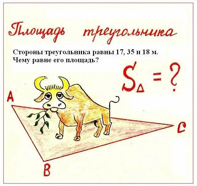 задачи по алгебре в картинках маленьком