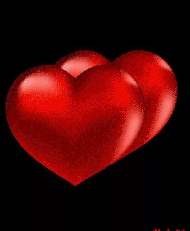 числе спасенных картинки фотографии сердца анимация средних размеров, внешне