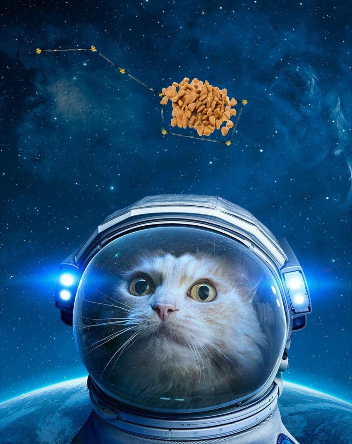 Фото с днем космонавтики прикольные картинки, пожеланиями