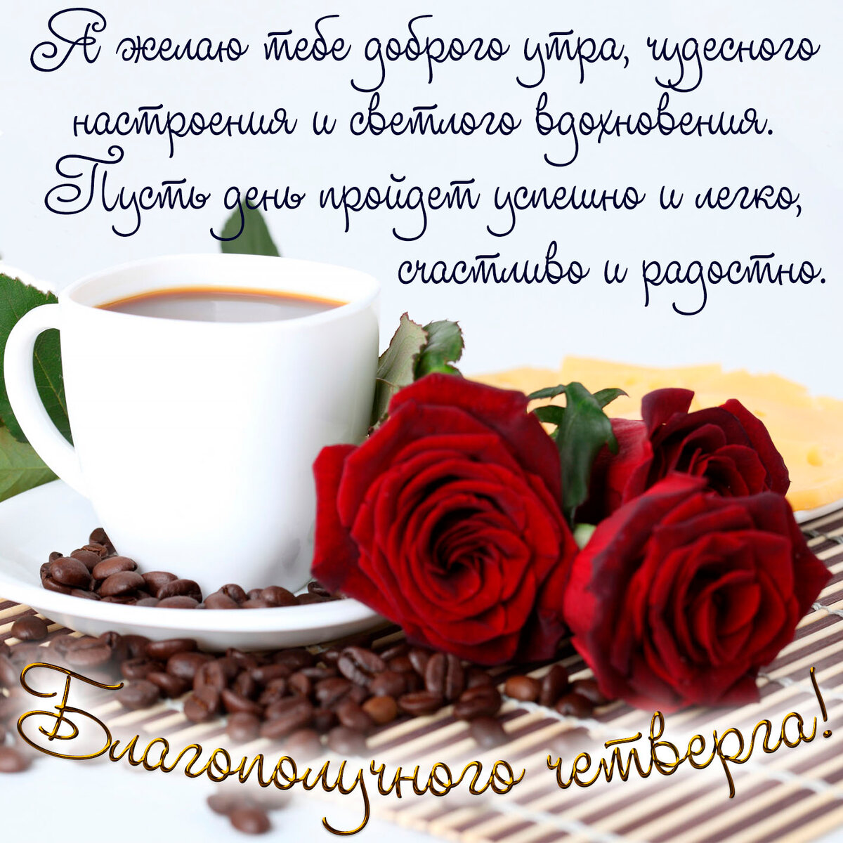 когда меня с добрым утром пожелания розы заселять насекомых
