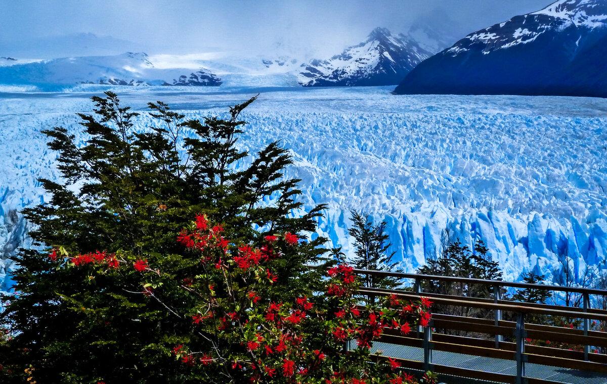 Зима в питере картинки информация