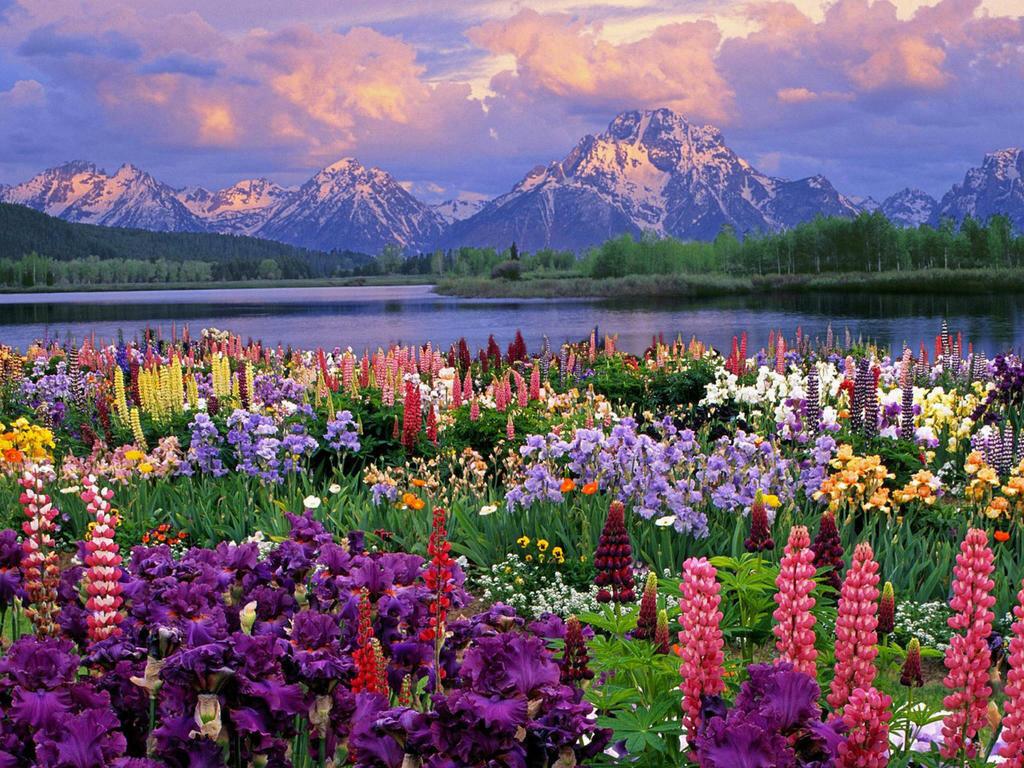 Открытки с пейзажами гор, истории открытки