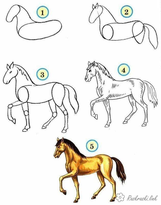 Картинки животных срисовать для детей