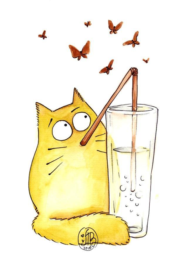 Котики смешные картинки с надписями для срисовки