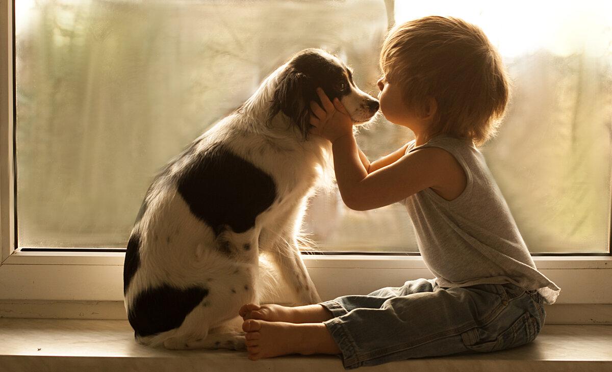 Открытки компьютер, картинки о любви к животным для детей