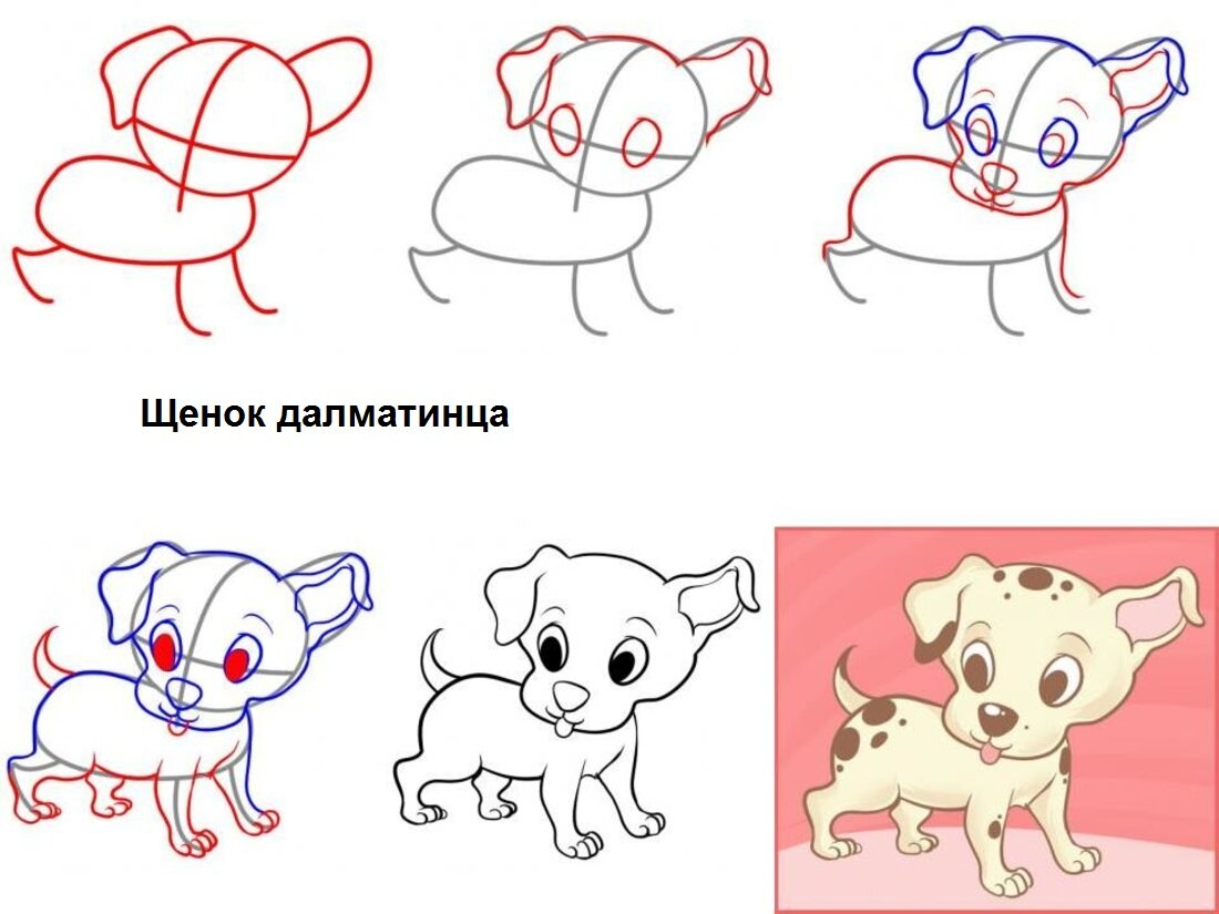 Картинки для срисовки поэтапно щенка