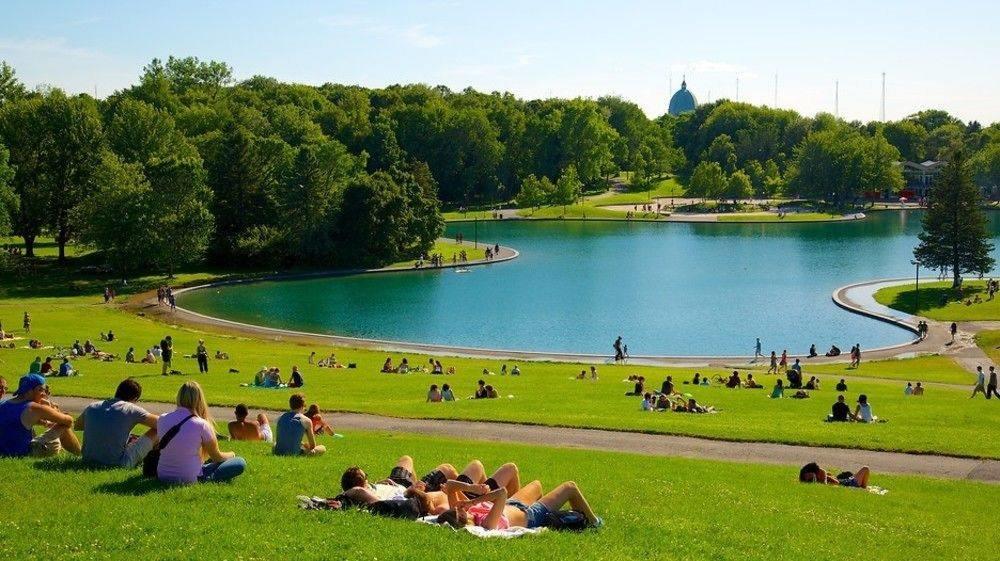 парк рядом с озером фото