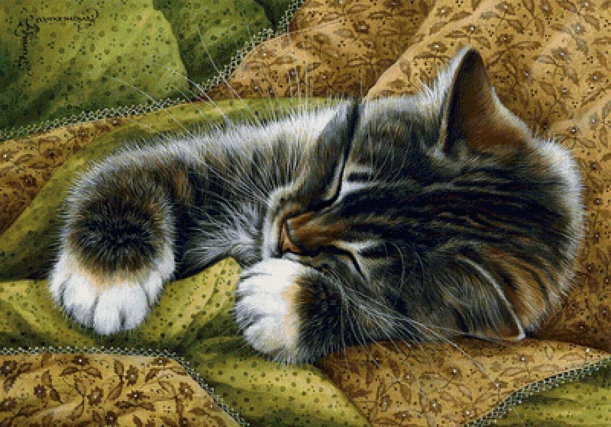 картинки спящий кот декупаж
