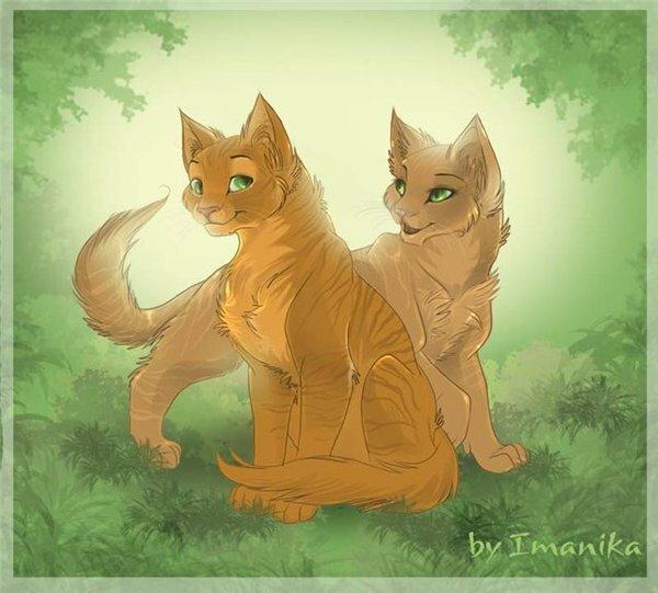 коты воители песчаная буря и дым нежно-фиолетовому
