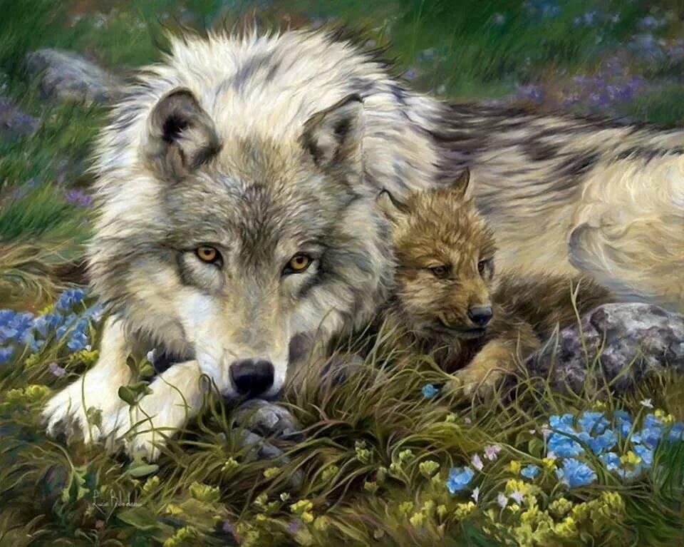 Военная, открытка волчонок