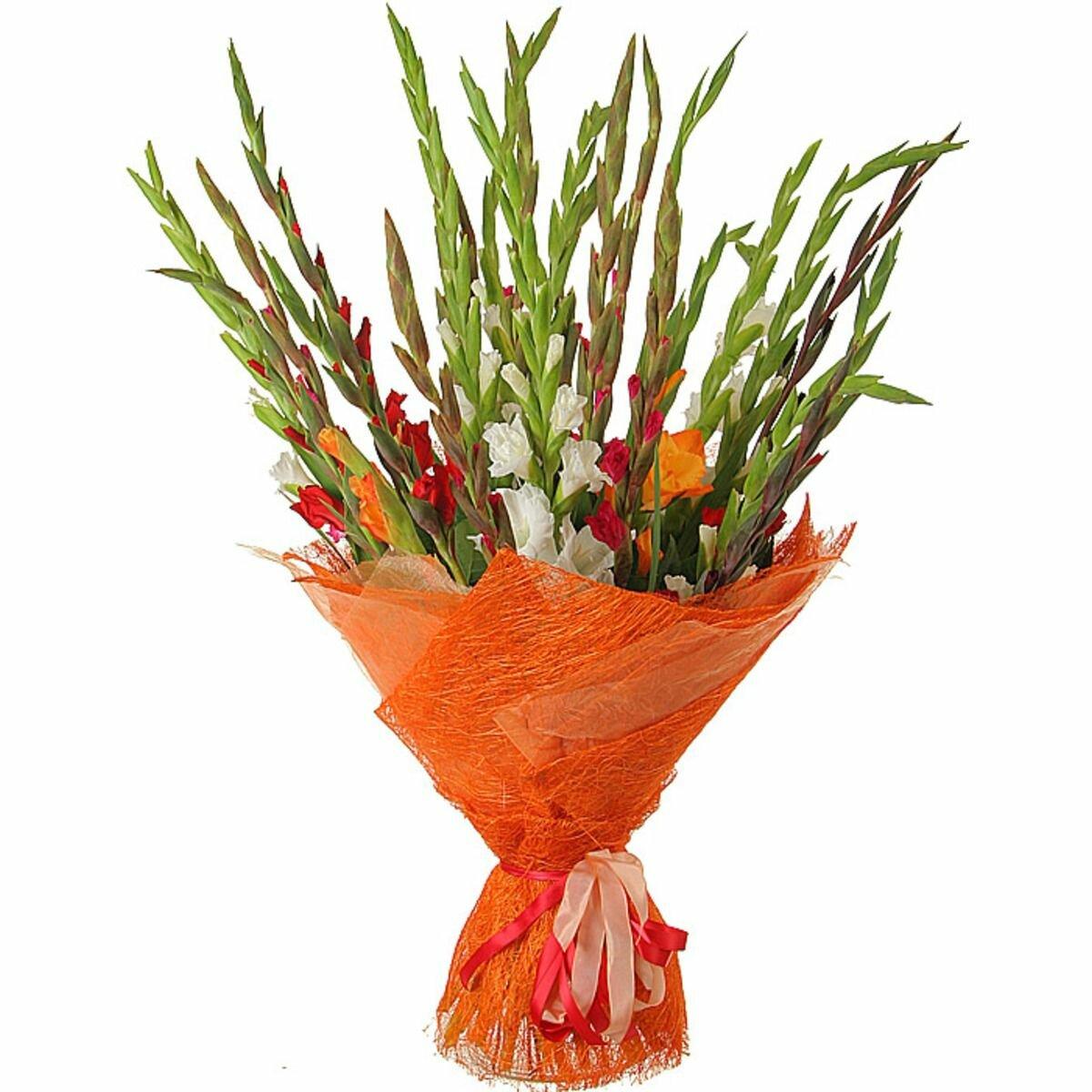 Гладиолусы купить букет в киеве, цветов вольск