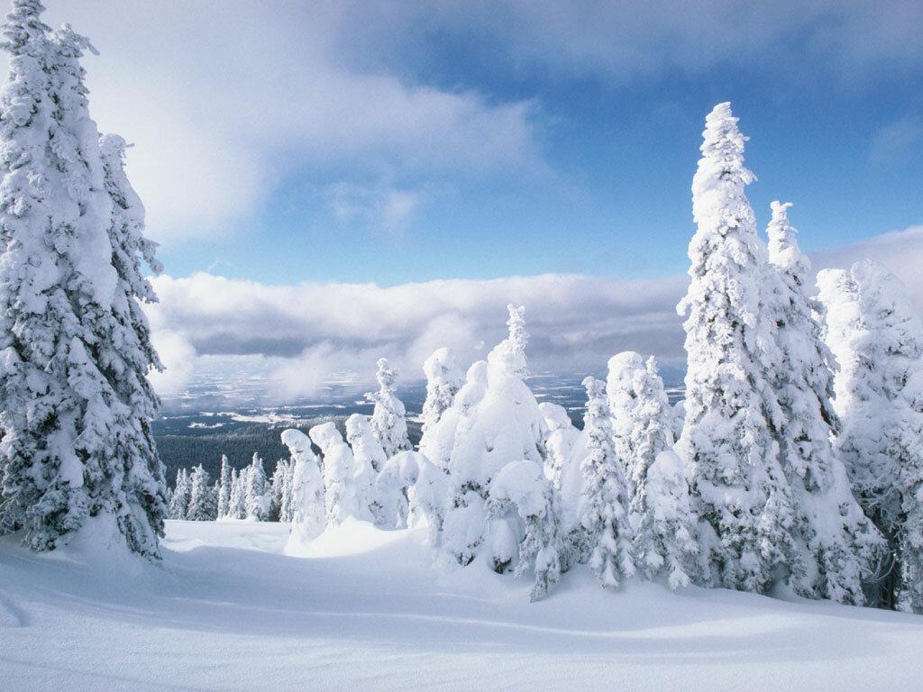 Поздравления декретом, открытка с снегом