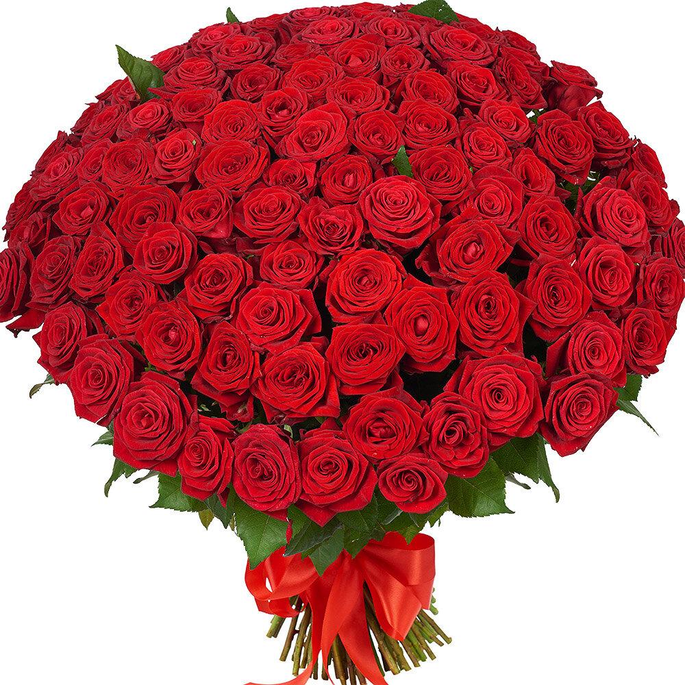 Большой букет роз фото, оптовая база цветов