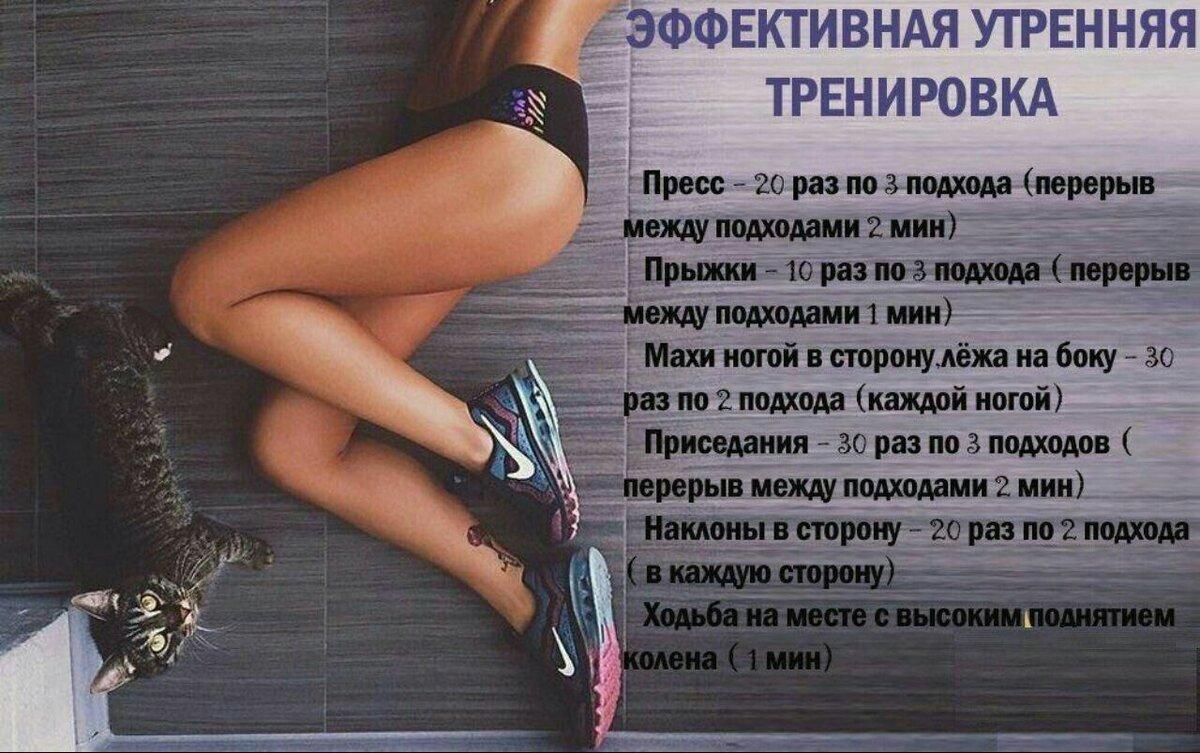 План Тренировок Для Похудения.