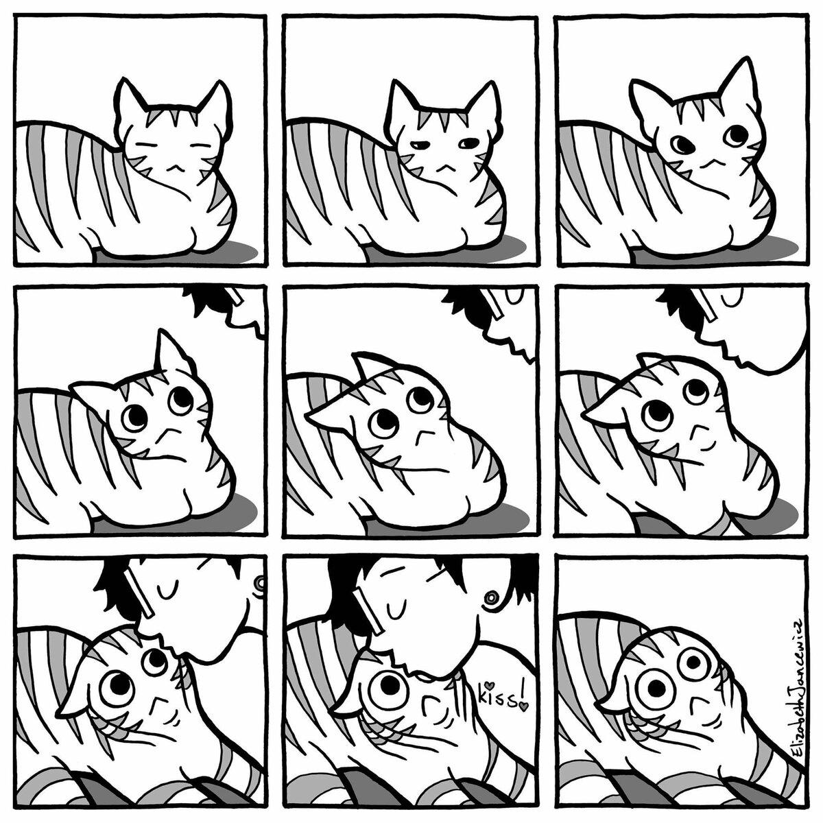 картинки с котенком из комиксов наносят линию