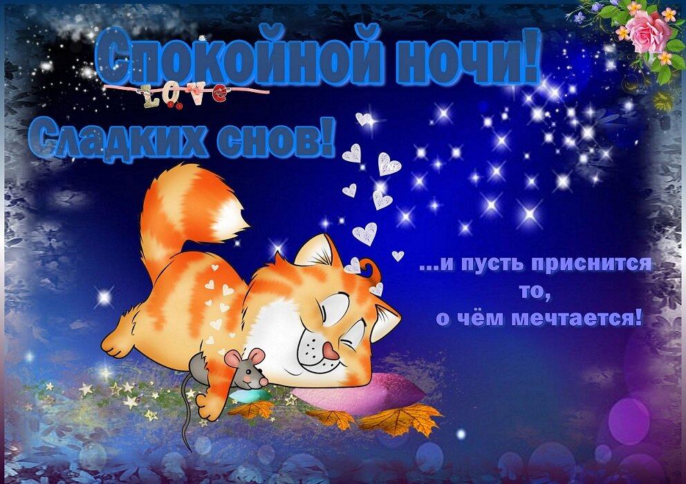 Открытки для любимого с пожеланием доброй ночи, картинки пожалуйста