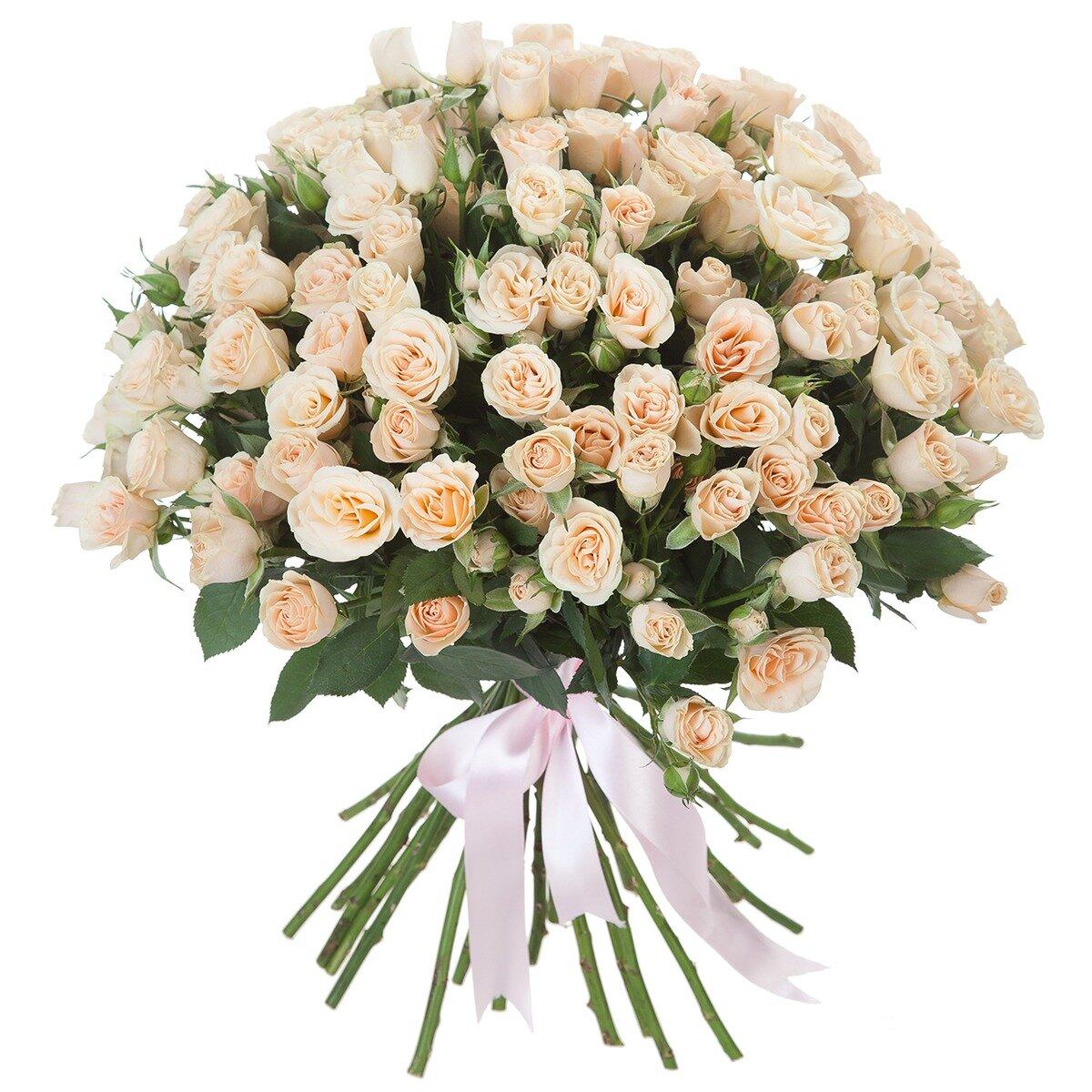 Роз доставкой, цветы в пензе цены фото