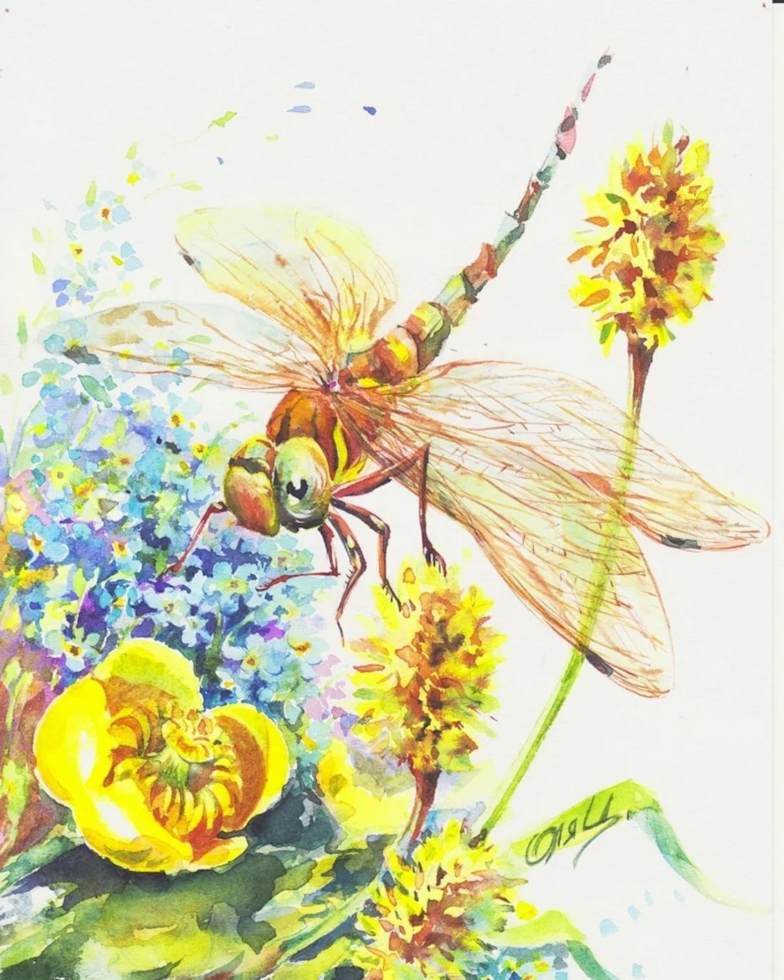 Картинки со стрекозами и цветами, приколов