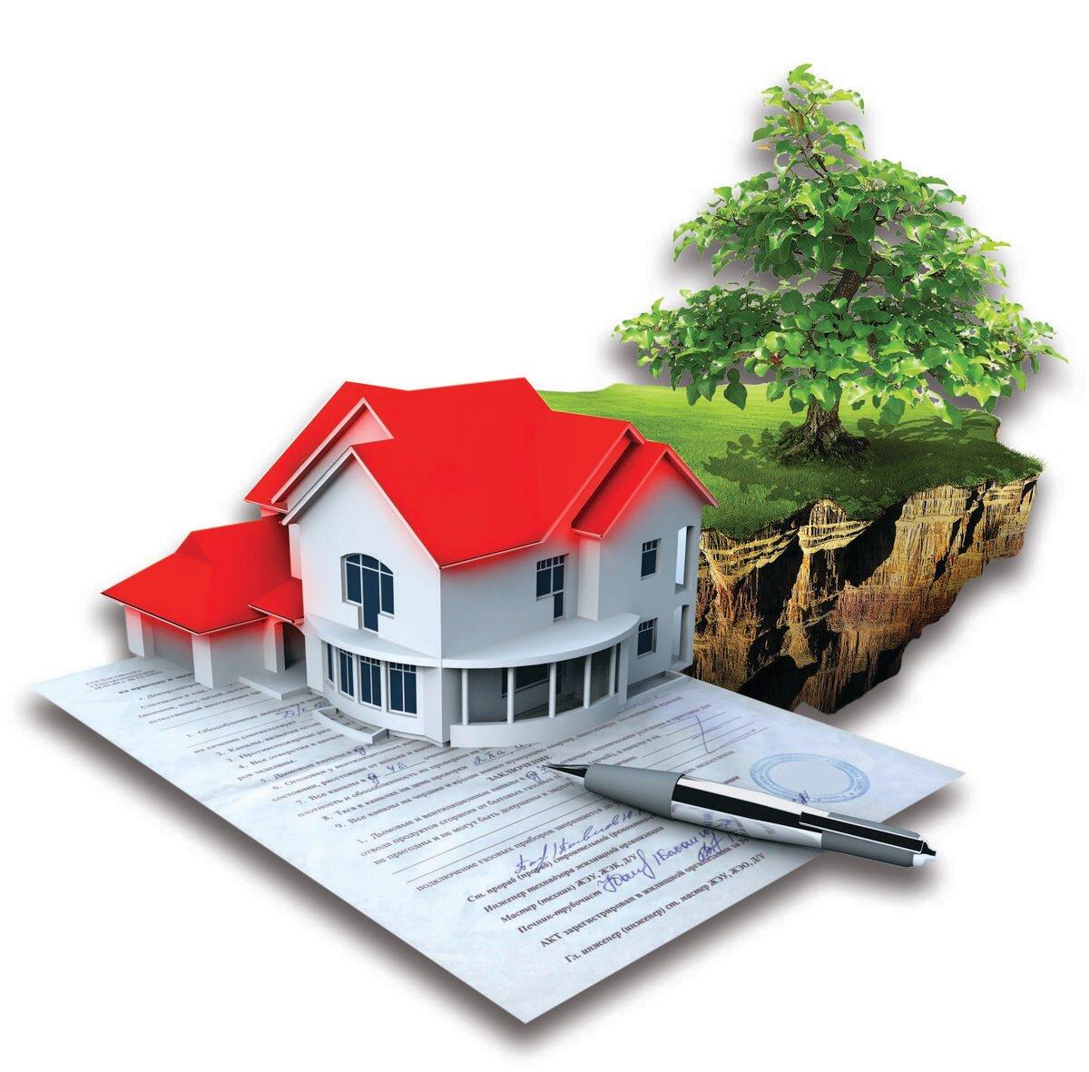 земельные и имущественные отношения
