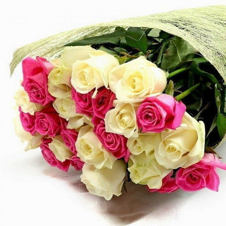 Открытки ежами, картинки букеты цветов просто так