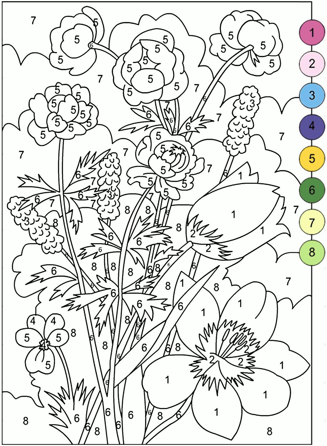 «Раскраска. Цветы: купальницы, тюльпаны - раскраска по ...