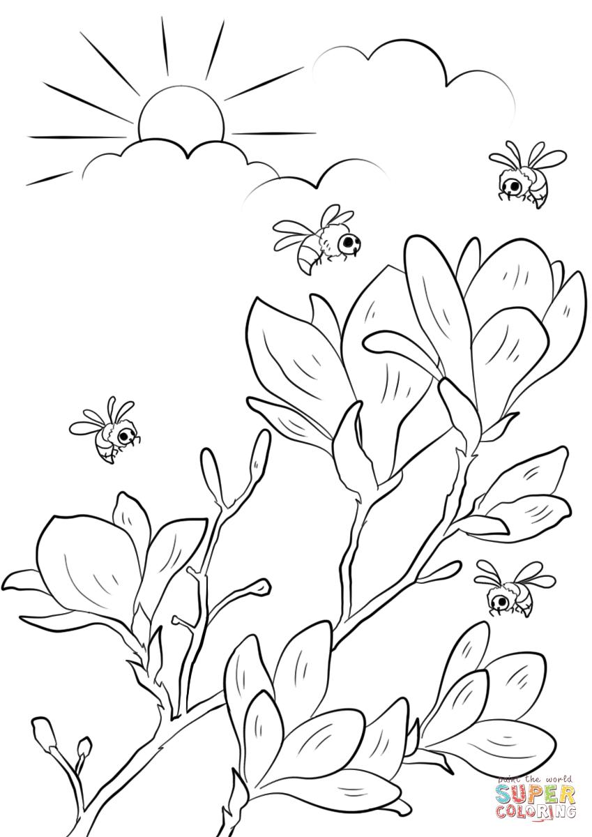 «Раскраска Весенние цветы Раскраски для детей печать ...