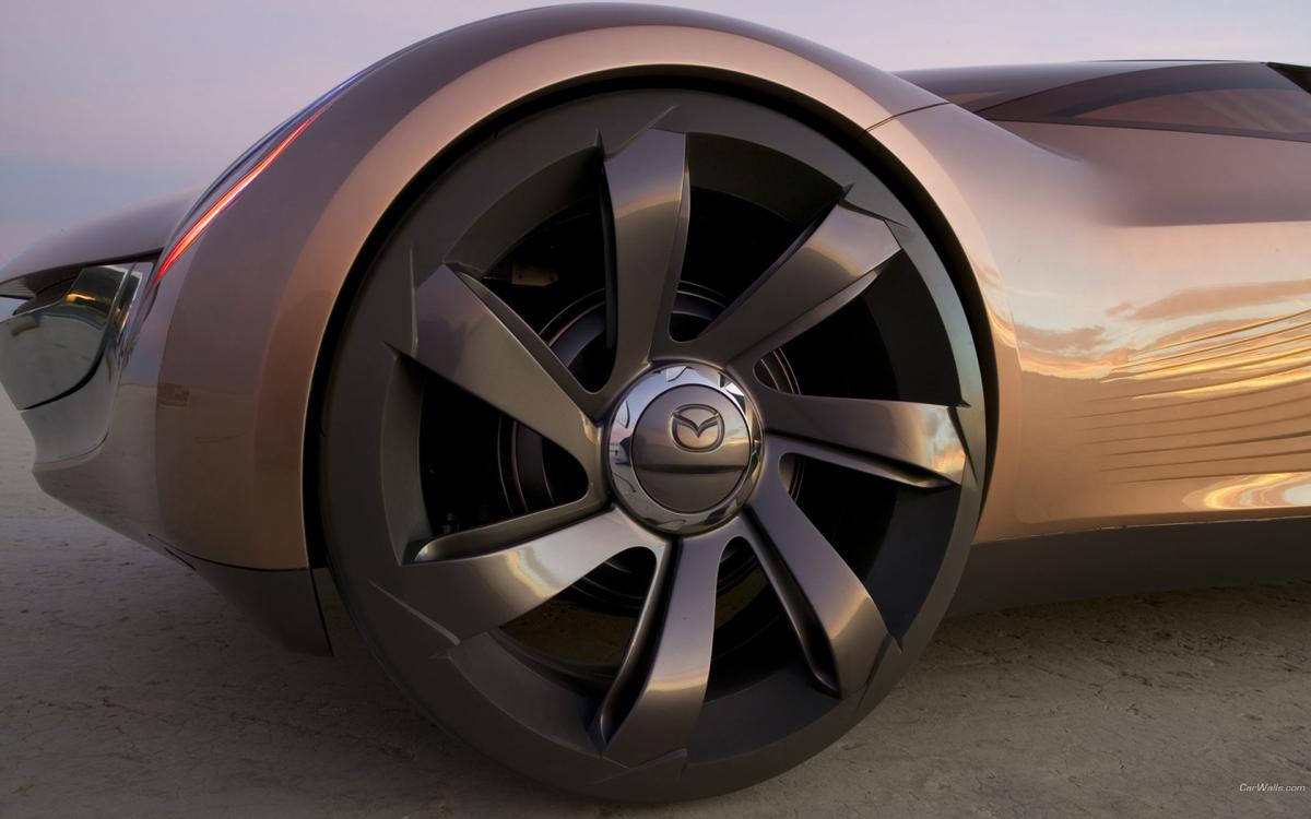 фото стильные колеса на авто жалящие насекомые являются