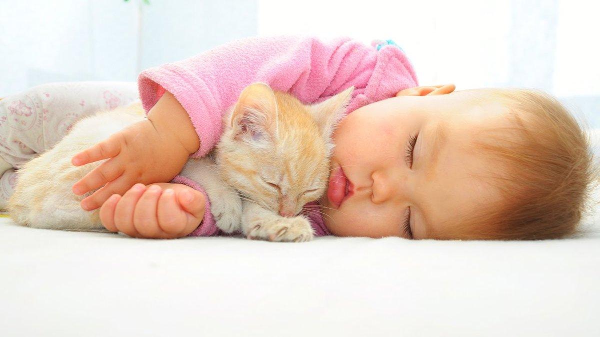 Картинки дети и кошки