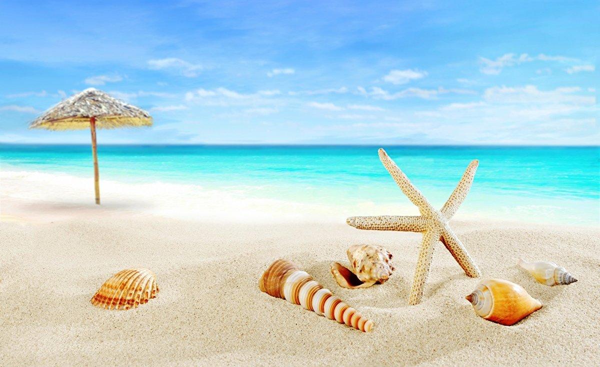 Открытки море солнце отдых, смешные красивые