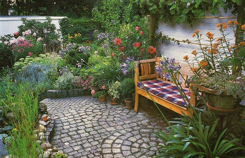 кустарники - mydreamgarden