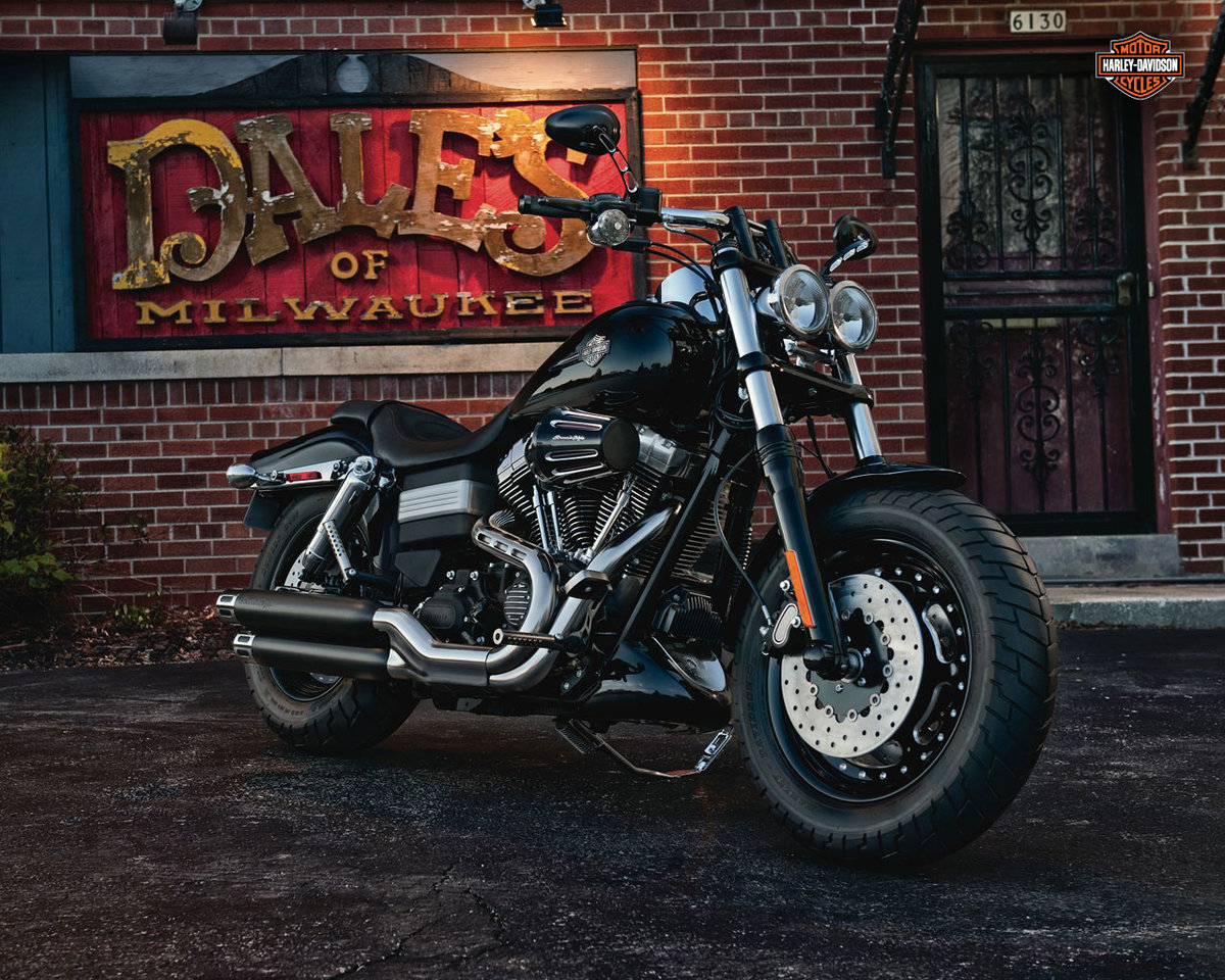 an introduction to the motorcycle industry harley davidson inc Free harley davidson company analysis of harley davidson inc william harley and arthur harley-davidson and the motorcycle industry as a whole didn.