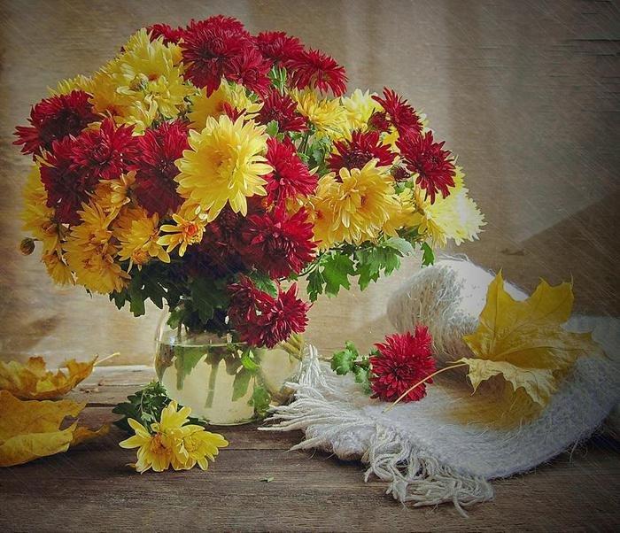 Картинки с хризантемами с днем рождения, надписями скучаю